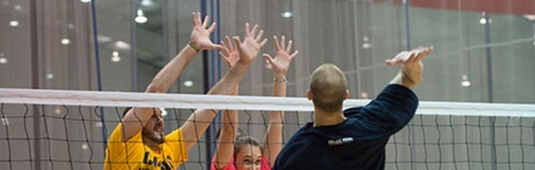 Adult Volleyball Leagues Chelsea Piers Connecticut Stamford Fairfield County Ct Chelsea Piers Connecticut Stamford Ct